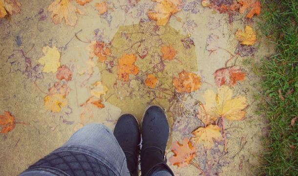 TAG : ALL ABOUT AUTUMN!