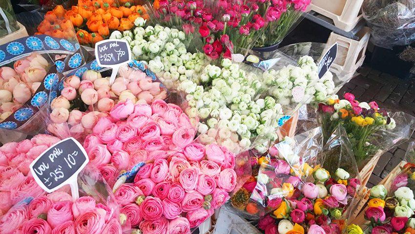 My Week #10 Bloemen, Action & een heerlijk zonnetje!