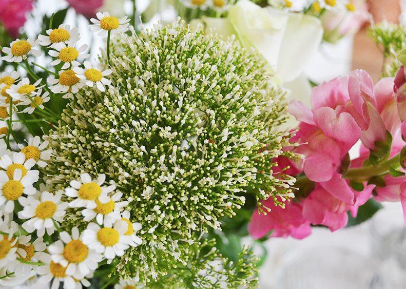 Mijn liefde voor bloemen!