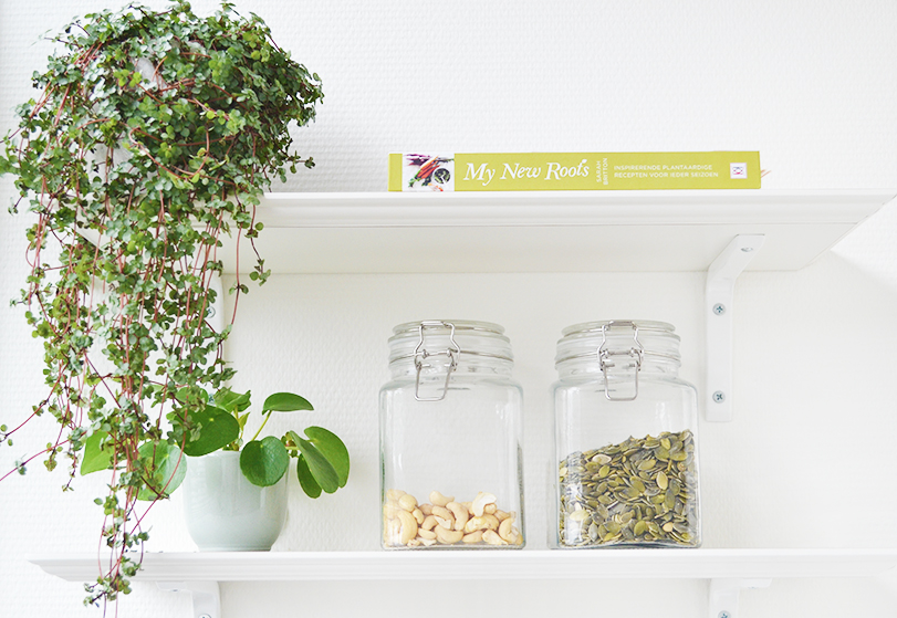 Plantjes in mijn interieur! | Inspiratie