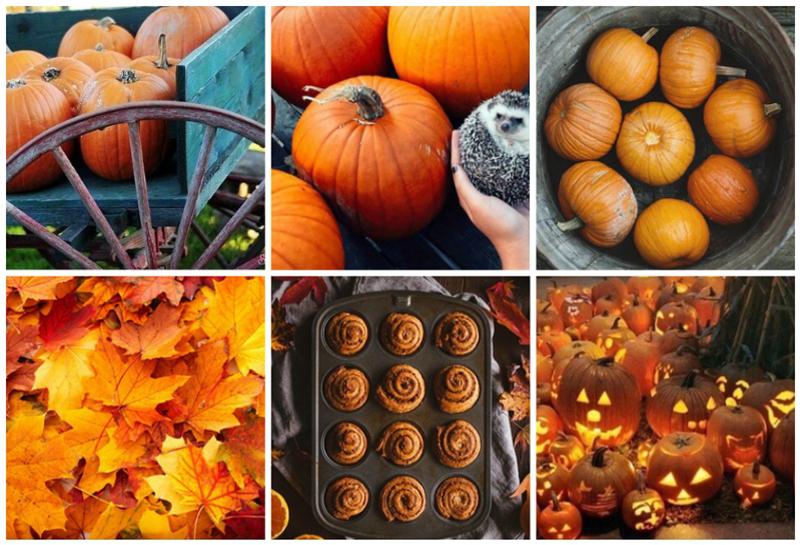 7x Waarom ik dol ben op de herfst!