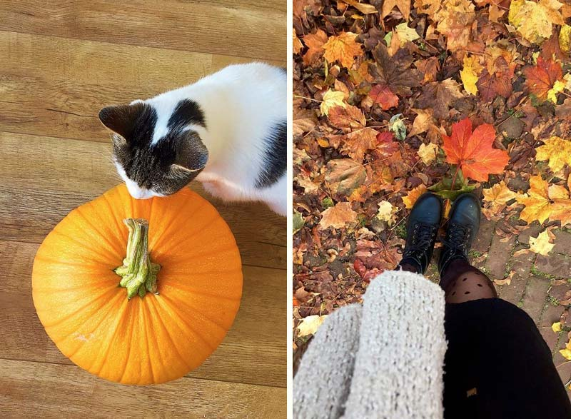 Met deze inspiratie krijg je zin in de herfst!